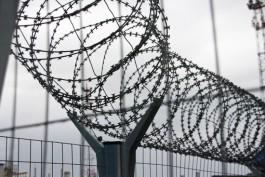 Забор между Литвой и Калининградской областью начнут строить в этом году