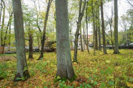 На проектирование парка Теодора Кроне в Калининграде выделяют 10 млн рублей