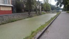 Почему в Калининграде не чистят Нижнее озеро?
