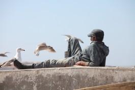«Подорожники-8. Сказочное Марокко»: Сафи — Эс-Сувейра — Агадир – Варшава