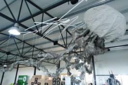 На экоплощадке под Зеленоградском открылся музей мусора