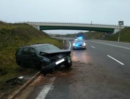 В Польше калининградский автомобиль вылетел в кювет из-за выбежавших на дорогу косуль