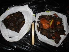 Сотрудники УФСБ задержали двух калининградцев, добывавших янтарь  на лодке
