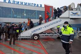 «Хаб в Европу»: Корытный рассказал о размещении российского лоукостера в Калининграде