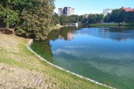 В Калининградской области обещают теплые выходные без осадков