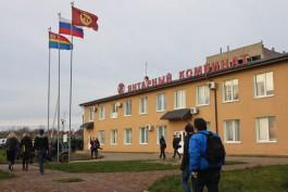 ВТБ развивает сотрудничество с АО «Калининградский янтарный комбинат»