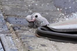 В Советске автомобиль сбил шестилетнюю девочку