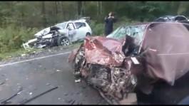 На трассе Калининград — Балтийск лоб в лоб столкнулись «Мерседес» и «Пежо»