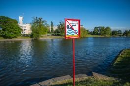 Облдума приняла закон о штрафах за купание в запрещённых местах