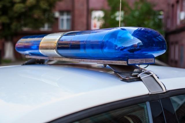 Полиция задержала в Калининграде мужчину, которого 10 лет разыскивали за насилие над ребёнком (видео)