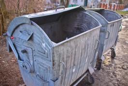 Установкой контейнеров для раздельного сбора мусора в Калининграде займётся московский подрядчик