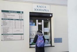 В калининградском зоопарке на пять дней закроют вход со стороны улицы Чайковского
