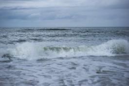 СМИ: В Балтийском море в районе Калининградской области дрейфует польская яхта