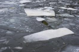 МЧС предупреждает о резком таянии льда на водоёмах Калининградской области
