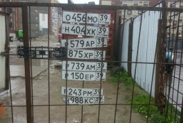 В луже на улице Елизаветинской калининградцы нашли больше десяти автомобильных номеров