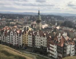 Число заболевших коронавирусом в Польше достигло 5000 человек