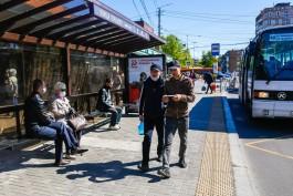 В Калининграде утвердили маршрутную сеть общественного транспорта на 2021 год