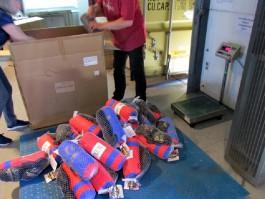 В Калининградскую область пытались ввезти 228 контрафактных наборов для бокса из Китая