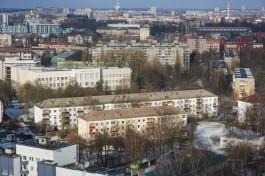 Синоптики прогнозируют усиление ветра в Калининграде до 22 м/с