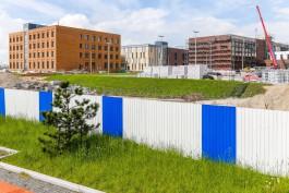 Первые объекты культурно-образовательного комплекса на Острове хотят ввести в эксплуатацию до конца июля