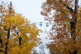 В Калининградской области ожидается тёплая неделя без дождя
