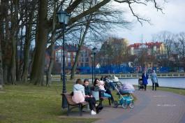 В выходные в Калининградской области ожидается потепление до +12°С