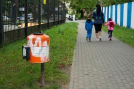 За сутки трое детей попали под колёса автомобилей в Калининграде