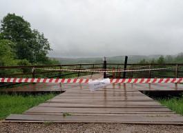 В Краснолесье обрушилась смотровая площадка с туристами: два человека госпитализированы