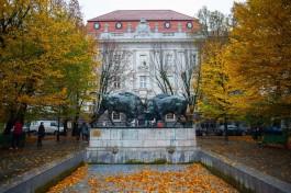 Калининград вошёл в топ-5 популярных направлений для отдыха на ноябрьские праздники