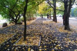 Во дворе в центре Калининграда обустраивают уникальную экопарковку и место отдыха