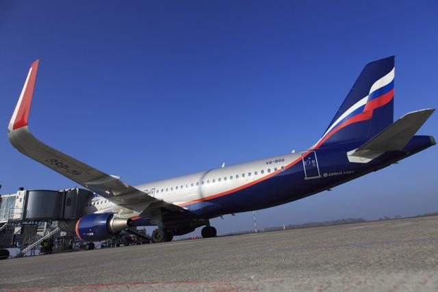 Первопричиной посадки самолета вХраброво могла стать утечка топлива