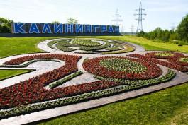 Власти пока не определились с новым местом стелы «Калининград» в конце улицы Невского