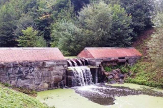 Новейшую дамбу наЛитовском ручье восстановили после появления течи