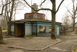 Правительство области выделит деньги на реконструкцию аварийного террариума в зоопарке