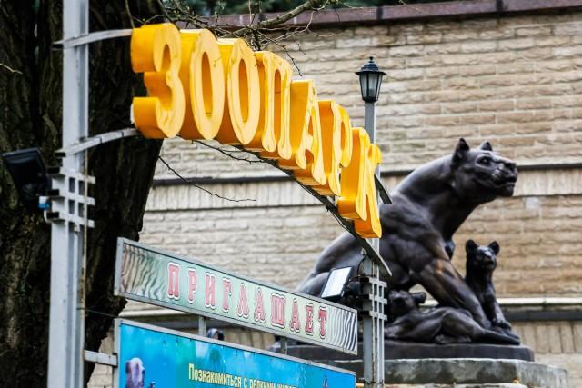Калининградский зоопарк меняет режим работы