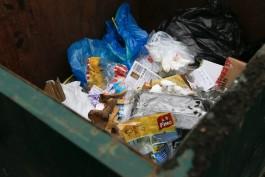 Администрация Зеленоградска подала в суд на регионального оператора по вывозу мусора