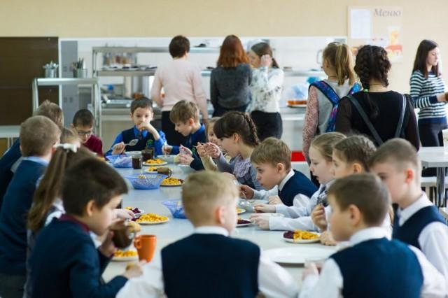 Ученики начальных классов в регионе получат бесплатное питание не раньше 2021 года