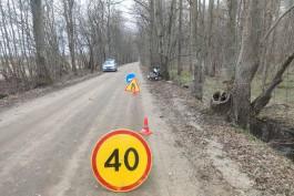 Под Полесском 44-летний скутерист без шлема врезался в дерево