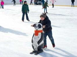В Зеленоградске рядом с ФОКом заработала ледовая арена под открытым небом