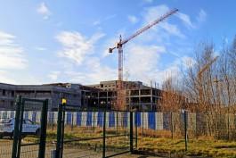 «Краны стоят, собаки спят»: как выглядит стройплощадка онкоцентра в посёлке Родники