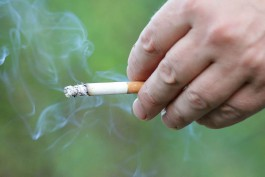 Поляк на «Лексусе» провёз через границу 400 пачек сигарет «для жены»