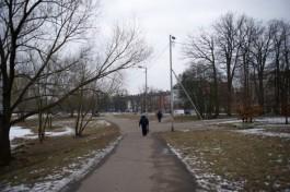 На рабочей неделе в Калининградской области потеплеет до +5°C