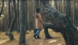 «Прощай, танцующий лес»: калининградский эколог раскритиковала новый промо-ролик о регионе