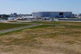 Концепцией застройки Острова займётся компания, работавшая над Олимпийским парком в Лондоне