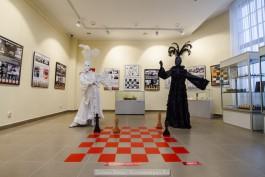 «Конь в кармане»: в историко-художественном музее Калининграда открылась шахматная выставка