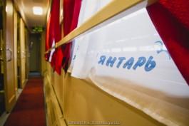 «Плавный ход, розетки и ТВ»: «дочка» РЖД полностью обновила вагоны поезда «Янтарь»