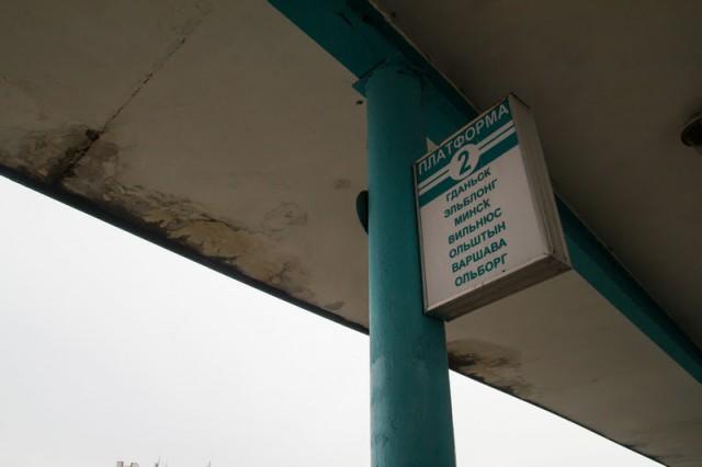 Из Калининграда в Гданьск запускают ещё один автобус
