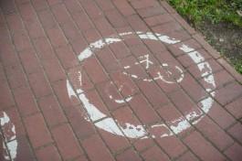В Калининграде решили не наносить разметку на велодорожках