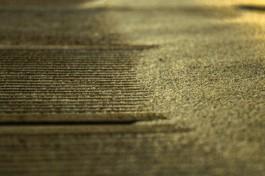 В Янтарном расчищают засыпанный песком променад