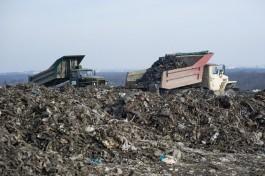 В Калининградской области нашли подрядчика для подготовки пяти свалок к рекультивации